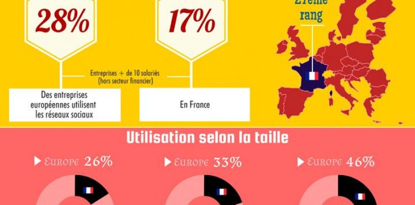 17% des entreprises françaises utilisent les réseaux sociaux