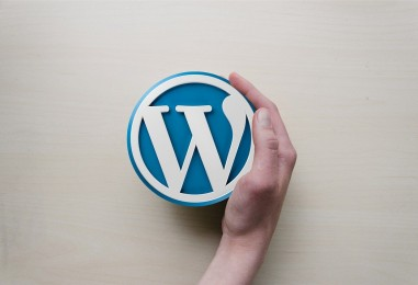 4 meilleurs plugins pour convertir un site WordPress en application mobile