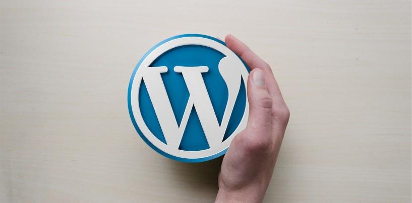 Hébergement web WordPress : nos conseils pratiques pour choisir le bon hébergeur